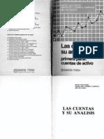 Las Cuentas y Su Analisis - Primera Parte