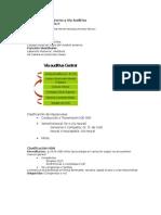 Apuntes Patologias de Oido Interno DRA NICKLAS