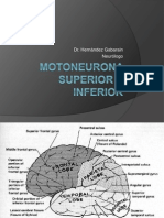 37.Motoneurona Superior e Inferior