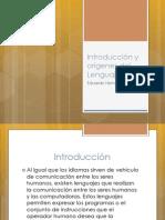 Introducción y orígenes del Lenguaje
