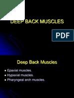 KUMC 09 Deep Back Muscles Student