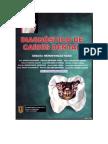 Henostroza - Diagnostico de Caries Dental