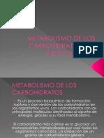 Cheril - Metabolismo de Los Carbohidratos y El Ciclo De