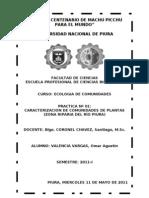 Nº02.doc