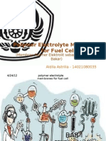 Polymer Electrolyte Membranes for Fuel Cell