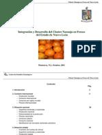 Cluster Naranja Nuevo León