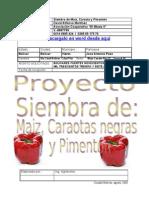Proyecto Siembra de Maiz Caraota Cria de Pollos