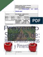 Proyecto Siembra de Maiz, Caraotas Pimentonn