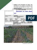 Proyecto Siembra de Sorgo Yuca Patilla Frijol