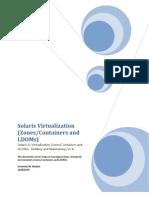 Oracle Solaris Virtualization