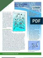 Plankton Food Webs