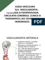 Patologia Vasculara Cerebrala