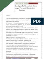 Copos Que Andam - Vera Lúcia Marinzeck de Carvalho
