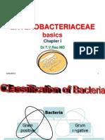 ENTEROBACTERIACEAE basics