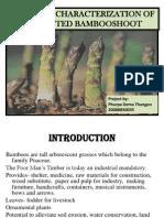 Fermented Bamboo Shoot