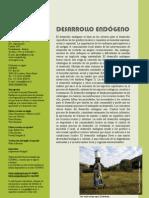 COMPAS Desarrollo endogeno13