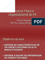 Estrutura Fisica e Organizacional Do Ps