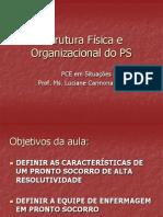 Estrutura Fisica e Organizacional Do Ps