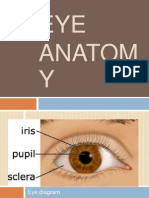 Sign&;Symptom and Anatomy of Eye
