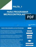 Palta 1 Micro
