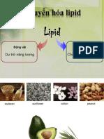 Chuyển hóa lipid