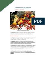 La alimentación y la nutriciónlibres