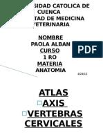 ANATOMIA paola alban
