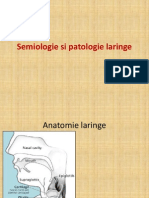 Semiologie Si Patologie Laringe