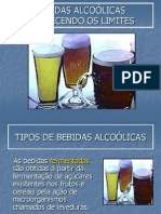 Bebidasalcolicas-conhecendo Os Limites