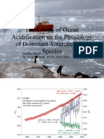 The Effects of Ocean Acidification on the Physiology of Dominant Antarctic Algal Species
