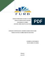 relatório Analitica - SEPARAÇÃO E IDENTIFICAÇÃO DE CARBONATO EM UMA CONCHA DO MAR