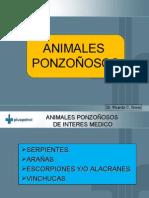 ANIMALES_..