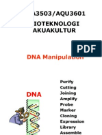 SBA3503 Lecture DNA Manipulation