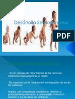 desarrollo sensoriomotor