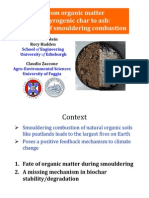 From organic matter to pyrogenic char to ash (EGU Vienna 2012)