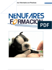 Auxiliar Clinica Veterinaria
