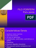 01 filo porifera