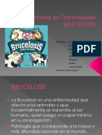 brucelosis clase