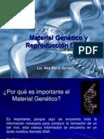 anatomofisiologia 1