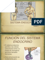 Sist. Endocrino Original