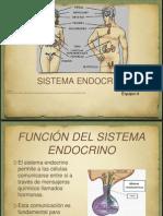 Sist. Endocrino Original