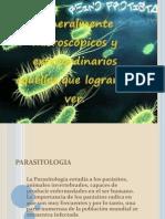 Anatomia de Los Protozoarios (2)