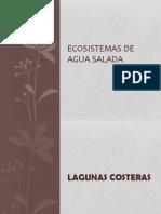 Ecosistemas_de_agua_salada[2]