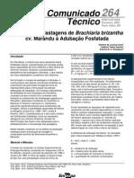 Adubação Fosfatada em Brachiaria brizantha cv. Marandu
