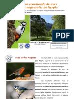 Primer Censo Coordinado de Aves en Los Noguerales de Nerpio