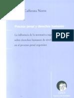 Cafferata Nores, Jose - Proceso Penal y Derechos Humanos