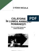 Dinu Ioan Nicula - Calatorie în lumea animatiei românesti