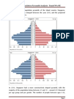 Population Pyramids Analysis - Singapore Daniel Wu