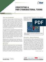 Flyer Microcystine Np Final