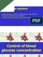 Blood Glucose Regulation
